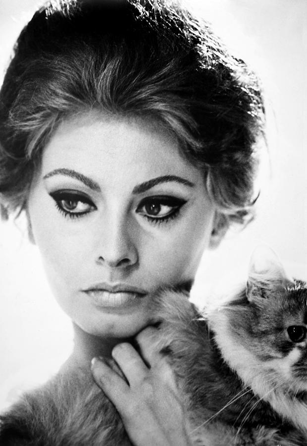 Image result for sophia loren""